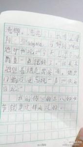 七彩南宁的小学二年级作文